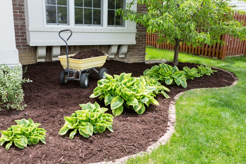Seasonal garden maintenance tips for a beautiful landscape for Garden maintenance jobs